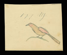LANCASTER COUNTY, PENNSYLVANIA GERMAN WATERCOLOR OF A SMALL BIRD ON A TWIG, CA 1840-60